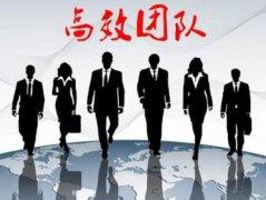 强龙网:如何打造高绩效团