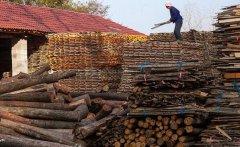 农村投资好项目有哪些,农村十