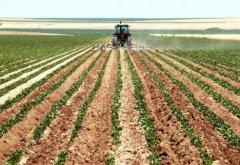 权威配资世界:2020年最赚钱农村
